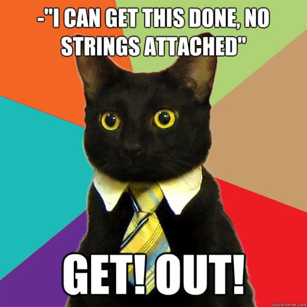 A Small Selection of the Business Cat Memes