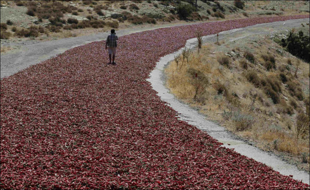 A Red Road Like No Other in the World