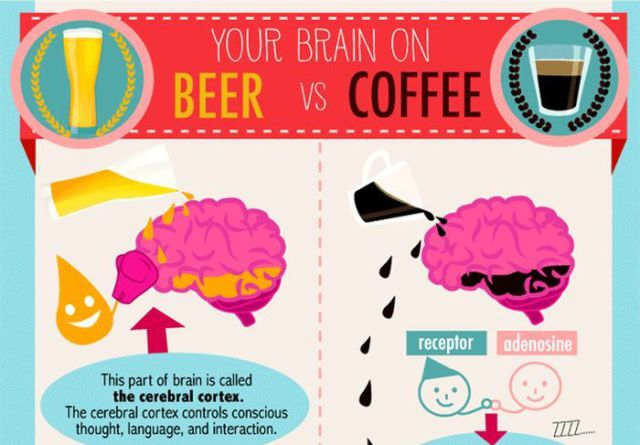 Beer vs. Coffee: Which Is Best for the Brain?