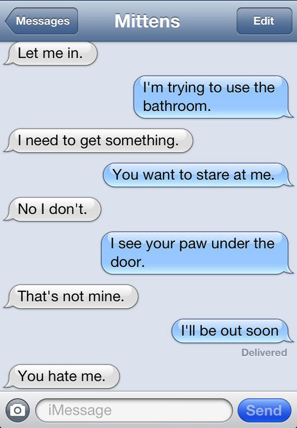 A Texting-Cat: Enough Said