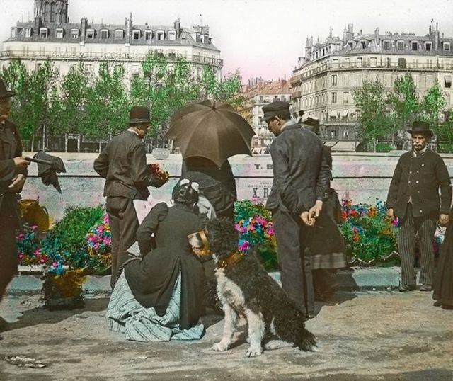 A 1900s Paris Compared to Paris Today