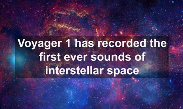 Random Insightful Facts That Will Make You Smarter