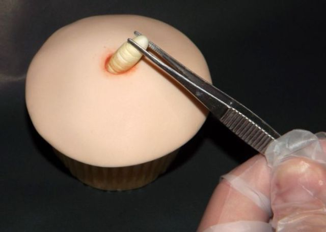 Possibly the Most Disgusting Cupcake Ever Made