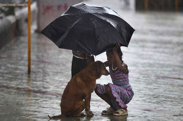 Special Heart-Warming Moments of Humans Doing Incredible Things