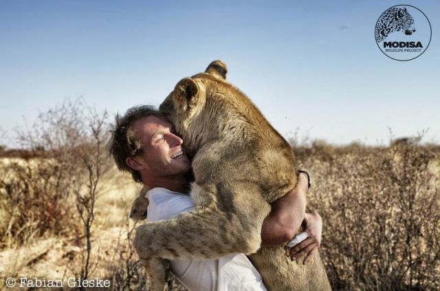 The Man Who Lived with Lions in Africa
