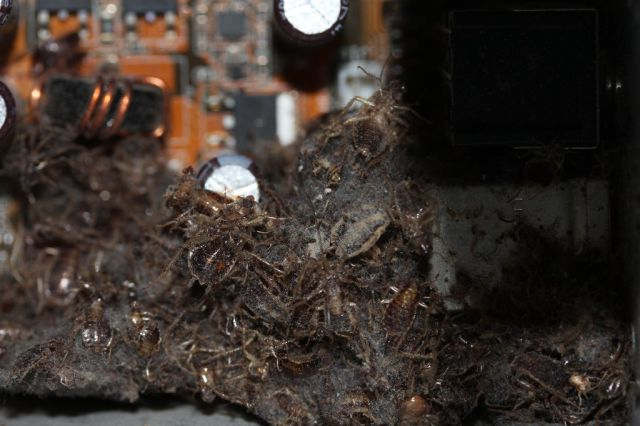 So This Computer Had a Little Bit of Dust Inside