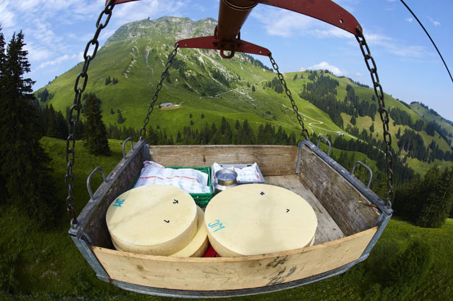 How Real Swiss Cheese Is Made
