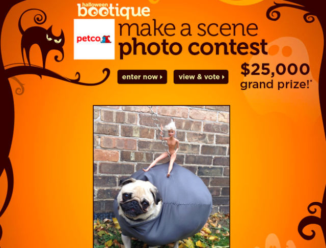 A Miley Cyrus Inspired Pug Costume for Halloween
