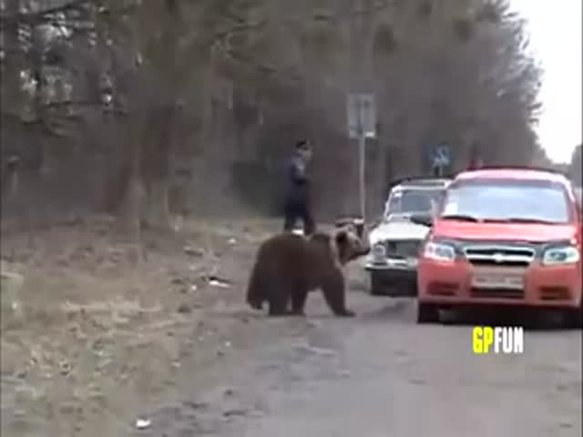 A Typical Day in Mother Russia