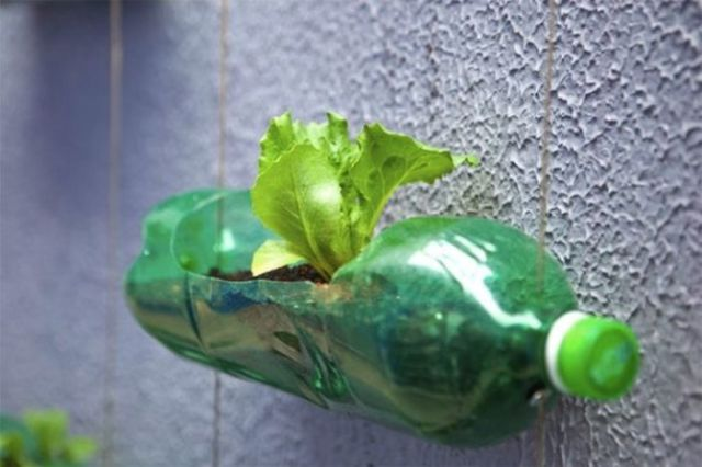 These Recycled PET Bottles Help to Make Our Planet Greener