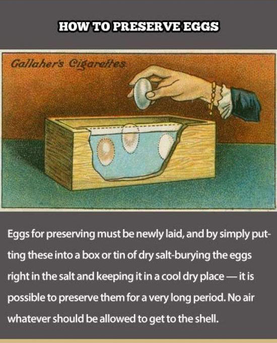 Hilarious Life Hacks from Over a Century Ago