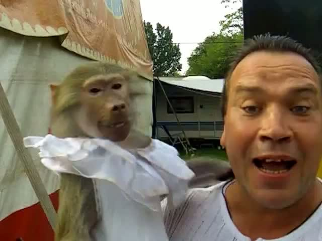 Monkey Imitates Owner