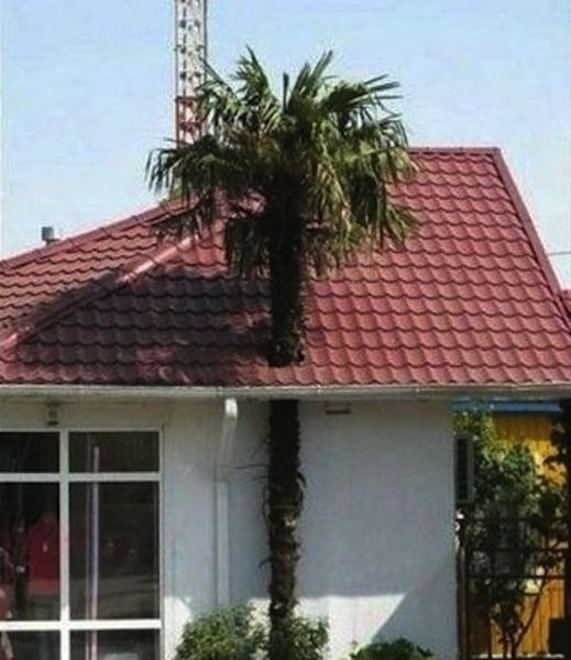 The Worst Architectural Decisions Ever Made