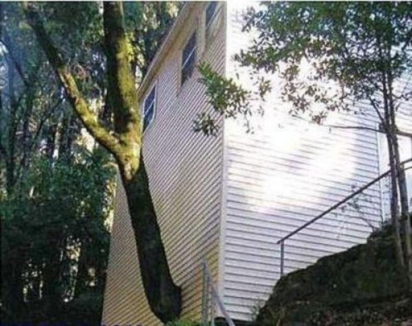 dinfo.gr - Οι 32 χειρότερες αρχιτεκτονικές αποφάσεις που πάρθηκαν ποτέ