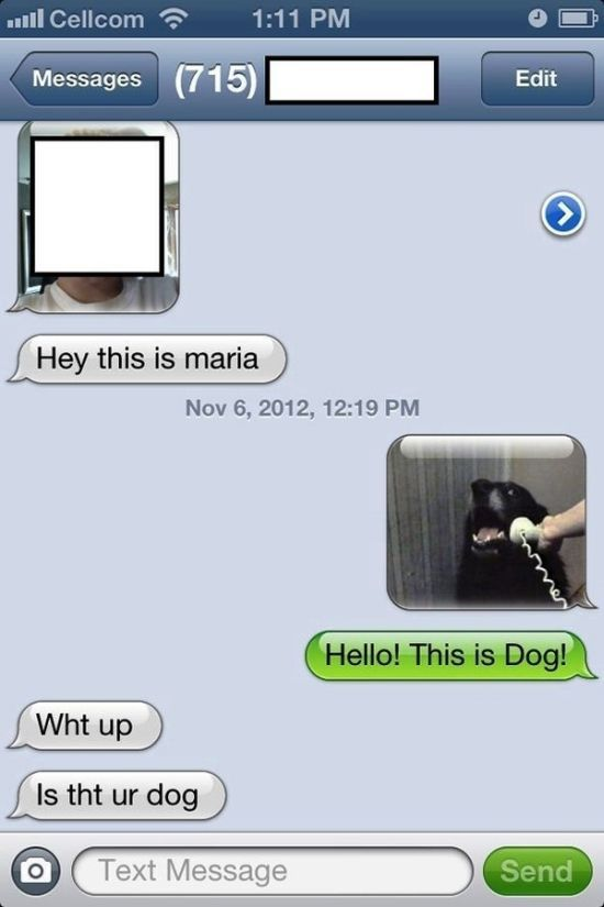Text Message Replies That Are Super-Funny