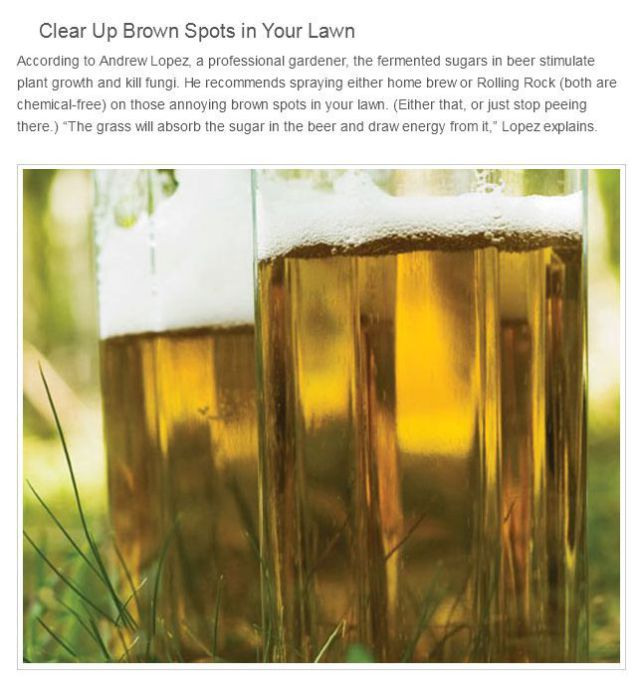 How to Put Beer to a Different Use Entirely