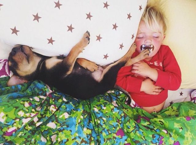 Cute Puppy and Toddler Cuddle Together