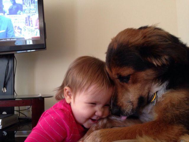 Sweet Animal Moments