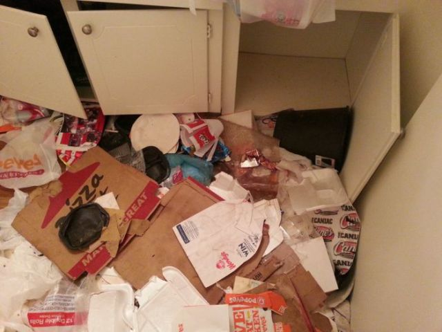 See Why This Guy Finally Decided to Clean His Apartment…