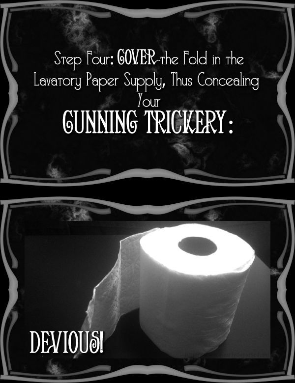 How to Execute the Most Annoying Toilet Paper Prank Ever