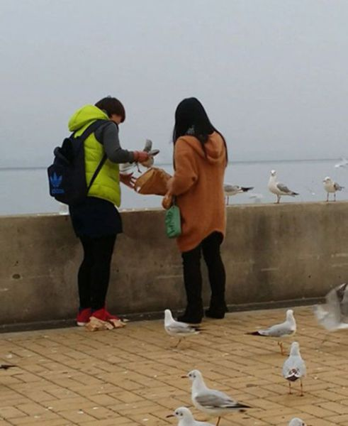 Unlucky Seagull Becomes a Chinese Couple's Dinner