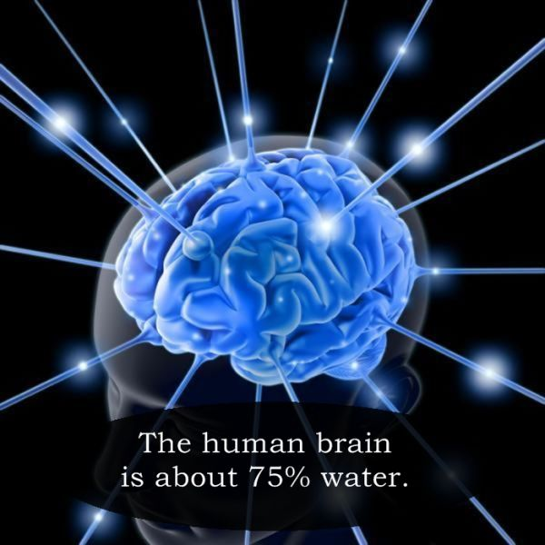 Cool Facts That Are Pretty Interesting to Know