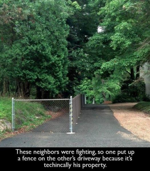 The Trials and Tribulations of Having Neighbours