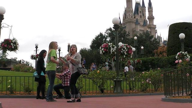 A Disney World Proposal Fail