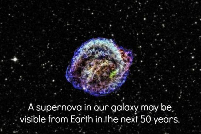 Awesome Scientific Facts That Will Interest You