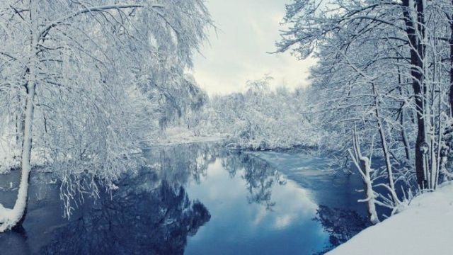 The World Is So Beautiful in Winter
