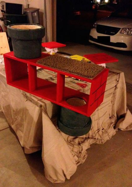 Super Mario Inspired Cat Shelf