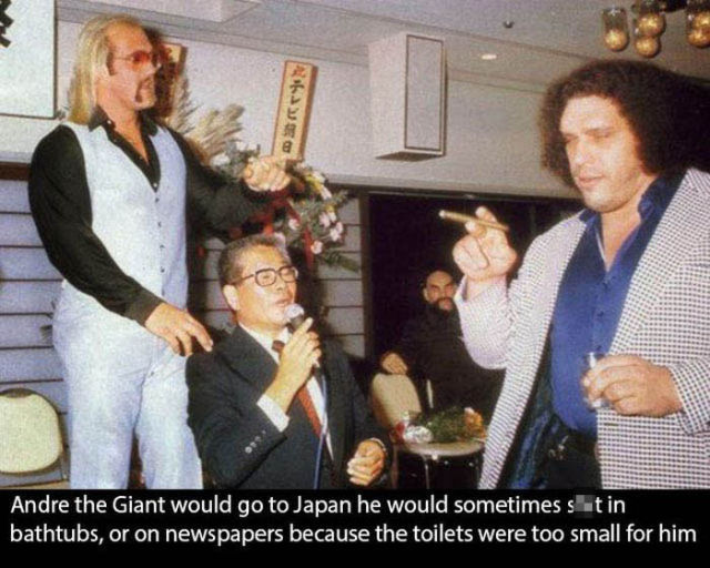 A More Intimate Look at the Life of Andre the Giant