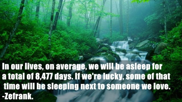 Silly Facts to Brighten Your Day