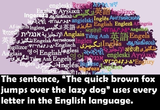 Silly and Useless Facts for Your Amusement