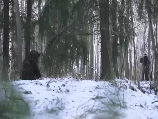 Bear Attack Prank
