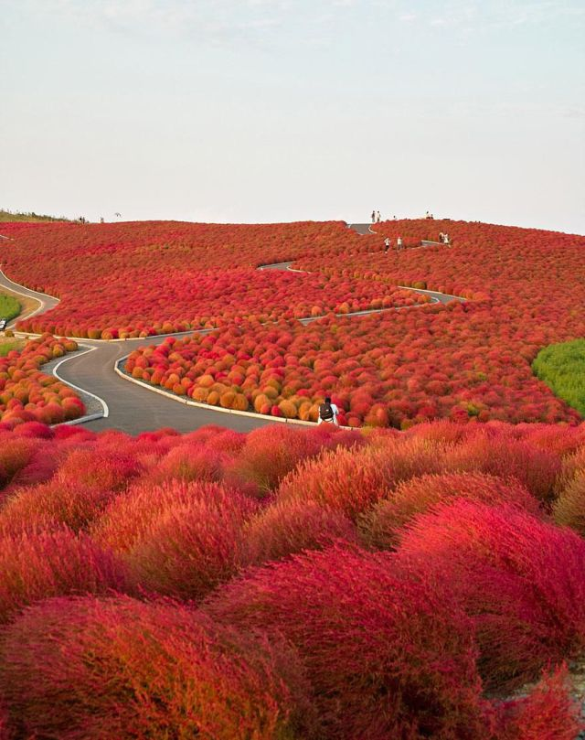 Stunning Natural Sights on our Beautiful Planet Earth