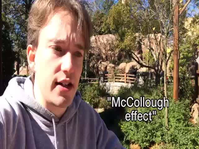 The McCollough Effect: The Image That Can Break Your Brain  (VIDEO)