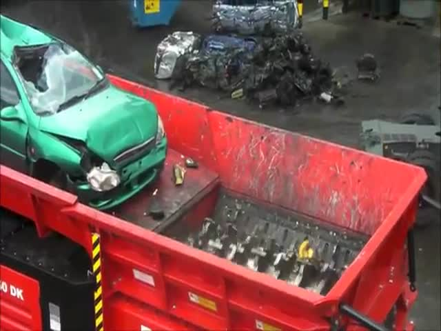 A Car's Worst Nightmare  (VIDEO)