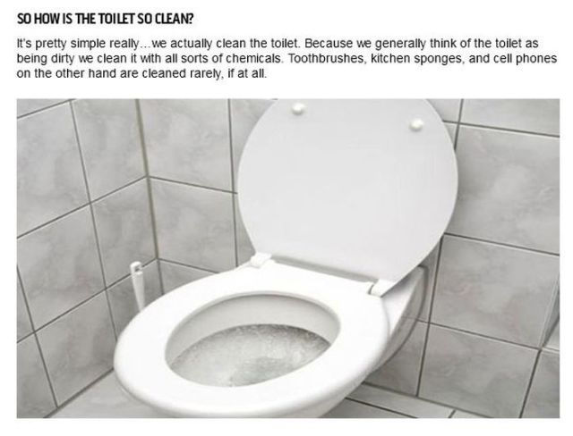 What's Dirtier Than Your Toilet?