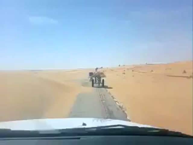 Meanwhile, in the Desert...  (VIDEO)