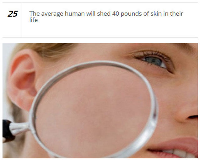 Get to Know the Human Body Better
