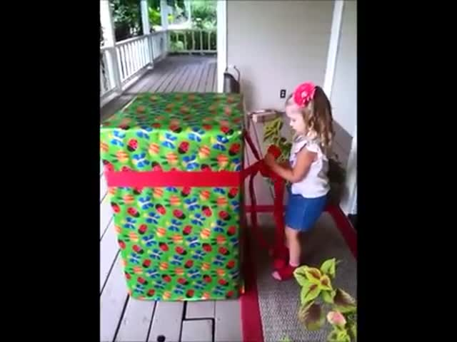Little Girls' Reaction to Giant Birthday Present Surprise  (VIDEO)