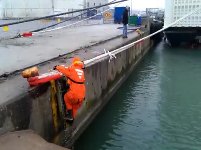 Hero Sailor Rescues Cat Stuck under a Ferry in Sweden  (VIDEO)