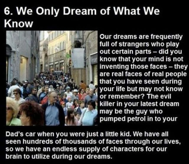Things You Didn't Know about Your Dreams