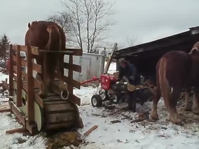 One Horse-Power Log Splitter  (VIDEO)