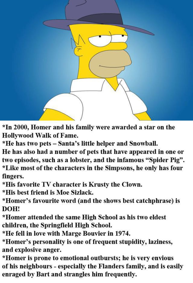 Arbitrary Facts about Homer Simpson