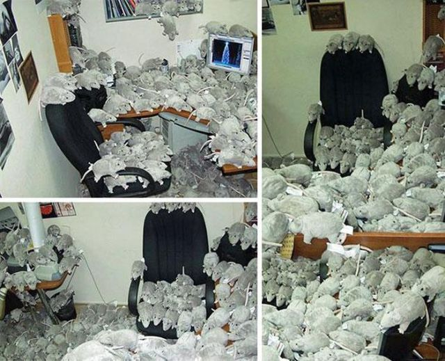 Prank Your Colleagues on April Fool's Day with One of These Epic Pranks
