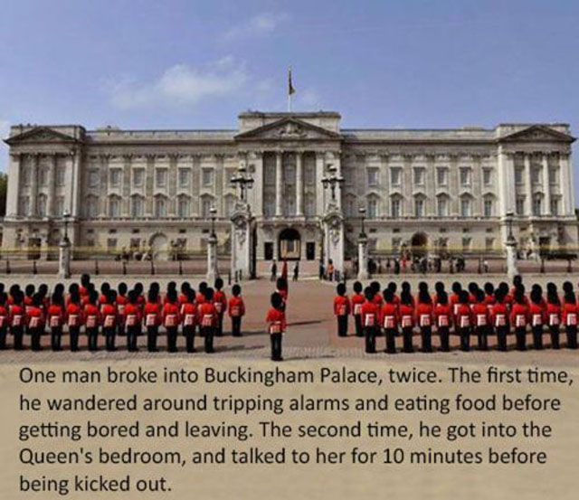 Odd Useless Facts That Will Probably Amuse You