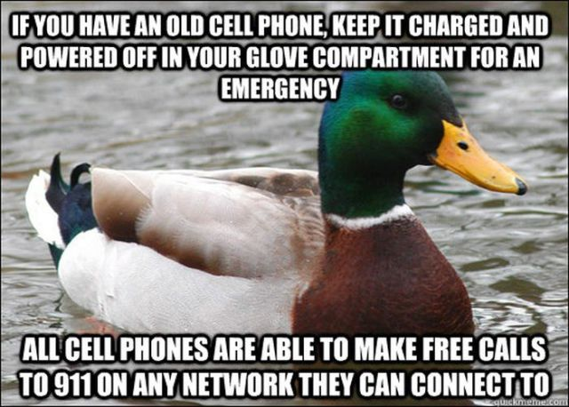 Advice Mallard Memes That Are Spot On