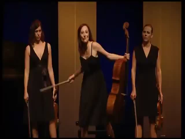 Classical Music Quartet's Funny Performance